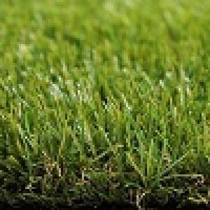 Dirbtinė žolė RoyalGrass