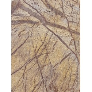 Rainforest Brown lankstus akmuo 122x61 cm, m2